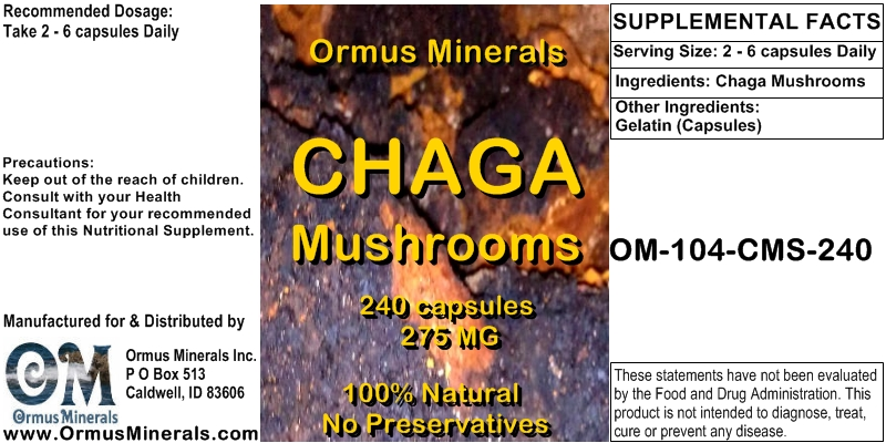 Chaga Mushrooms Caps